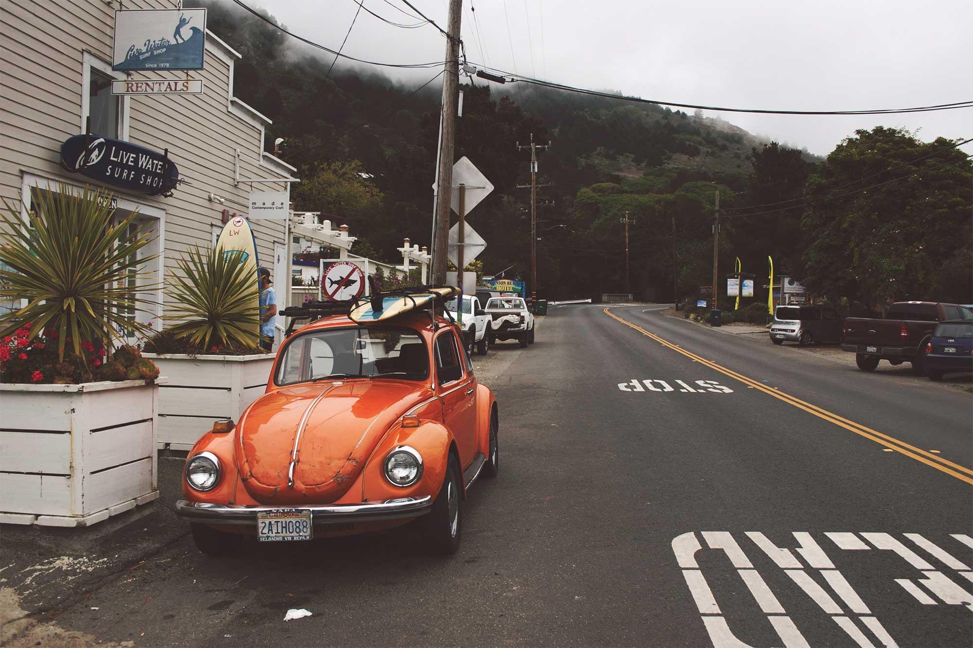 bug_surf